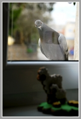 09-04-2012_halo_mate_tam__taky_velikonoce
